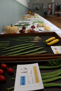 Vegetable displays the length of the hall!